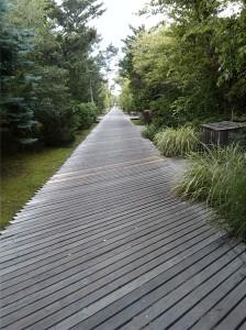 FI path