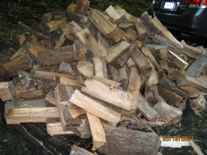 Wood delivered in our Driveway