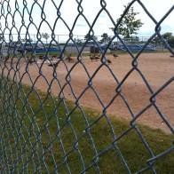 15-geese softball