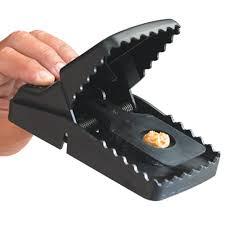 plastic trap
