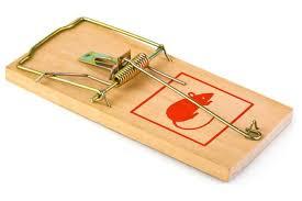 wood trap