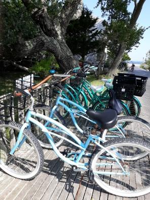Blue House Bikes